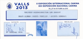 Exc 1ª , CAC, CACIB, MR