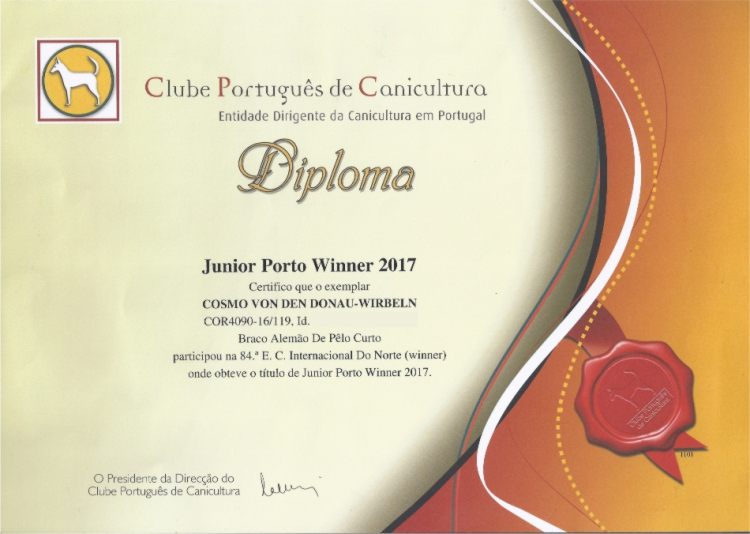 Junior Porto Winer 2017
